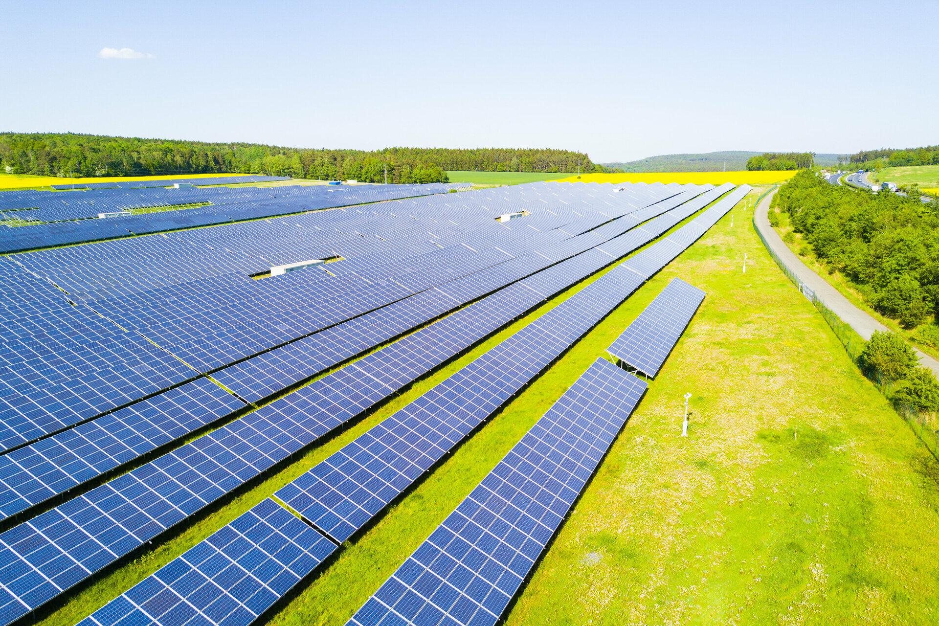 Planta o Huerto Solar(2)