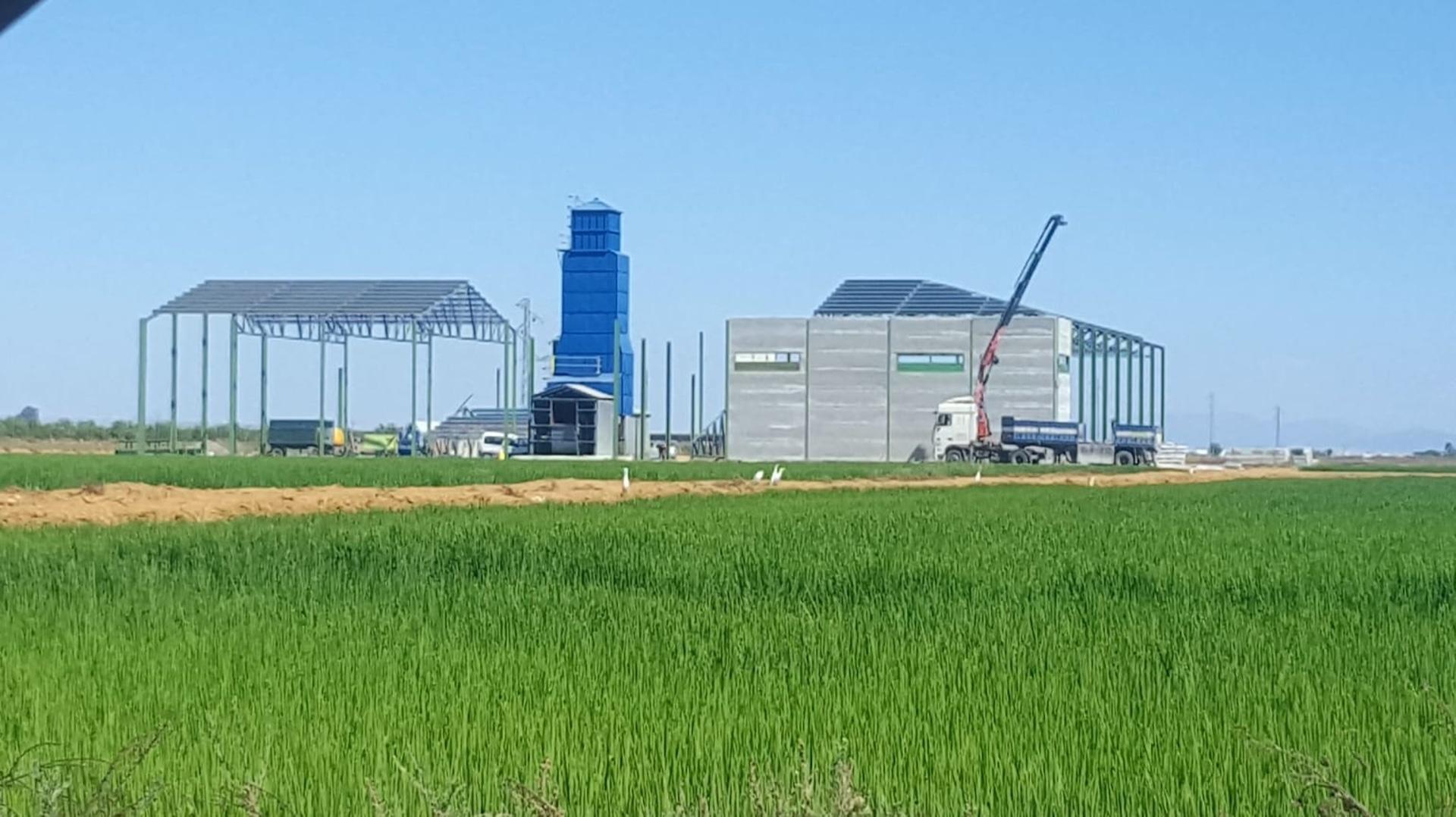 silo arrroz(1)
